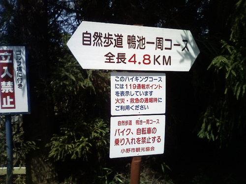 P1009753